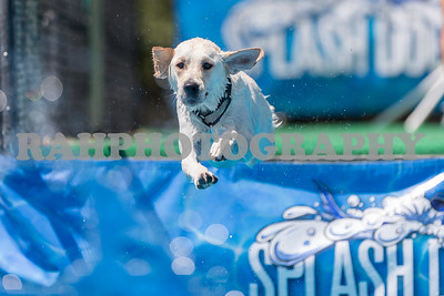 Splash Dogs Heritage Park Saturday 08-20-2016