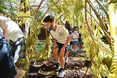 Patrick Dougherty - Lower School Stickwork