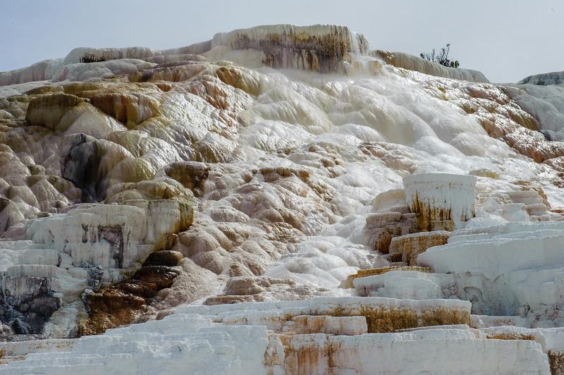 20130511-12 Yellowstone 113.jpg