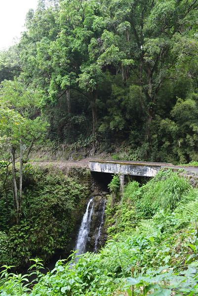 Maui - Hawaii - May 2013 - 23.jpg