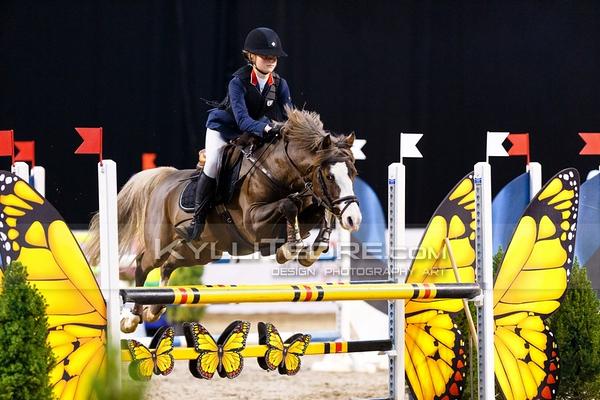 110 cm ponies
