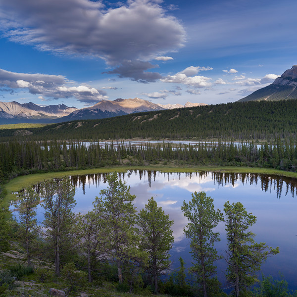 Reflection of clouds and trees in North Saskatchewan River, David Thompson Highway, Clearwater County, Alberta, Canada