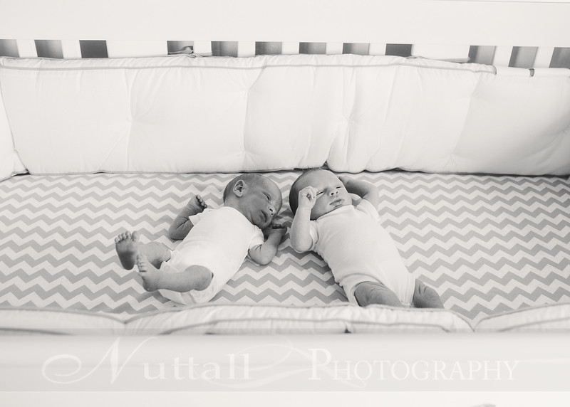 Shoff Twins 90bw.jpg