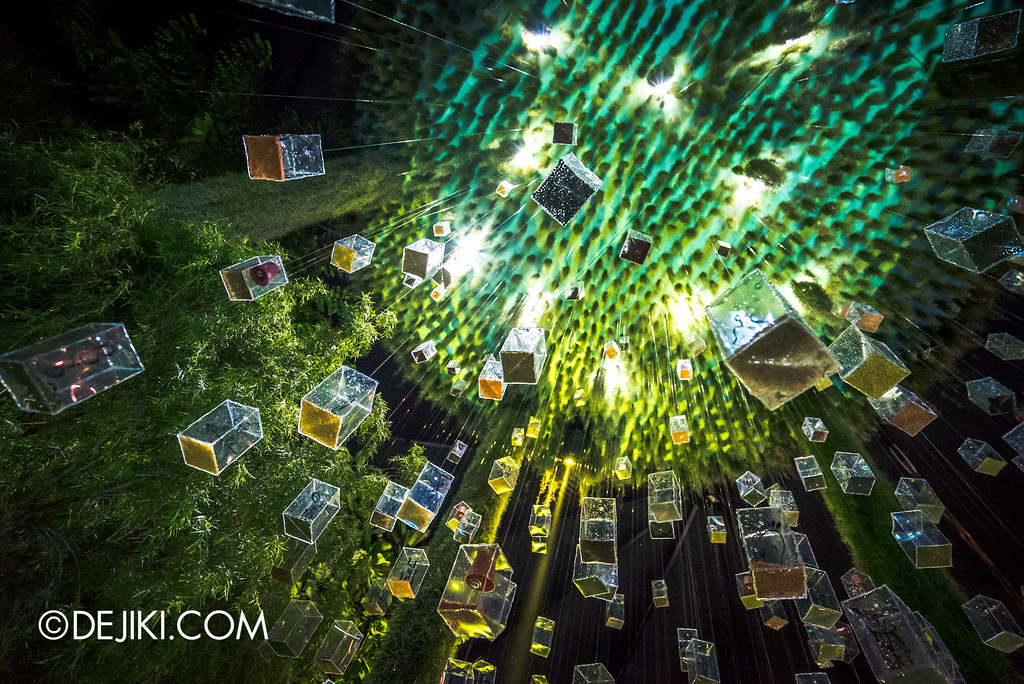 Singapore Garden Festival 2016 - Fantasy Garden - Nature's Resolution glass cubes 3 lower