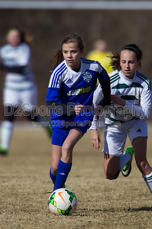 U14 FCCA Cabarrus Elite vs TCYSA Lady Twins Blue G 1/26/2014