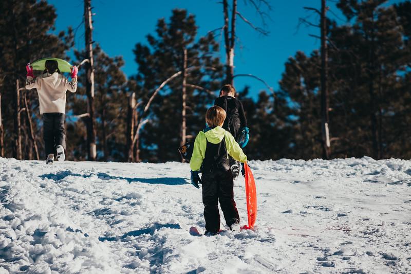 snowMLK-2791.jpg
