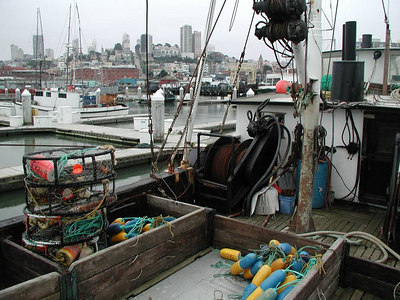Fishermans Wharf behind the scenes