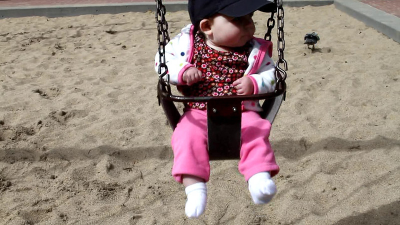 March 24, 2010 - Swings