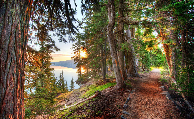 Two Paths This path around Crater Lake winds this way and that. It occasionally opens up to a wide vista where I can see the lake and morning sun. But the path itself was quite nice with the sun slicing in through the early-yellow leaves.You might remember this from the video I made while here a few weeks ago. As usual, you can find that video and more on my YouTube channel!- Trey RatcliffClick here to read the rest of this post at the Stuck in Customs blog.