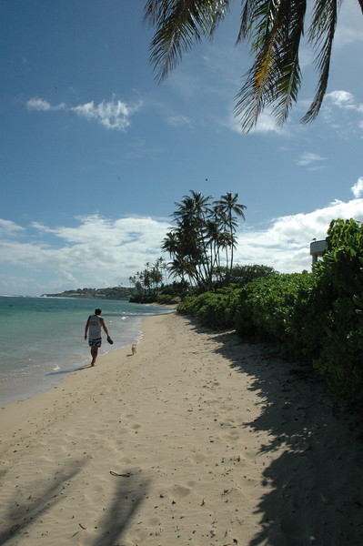 Hawaii - Kahala Beach-21.JPG