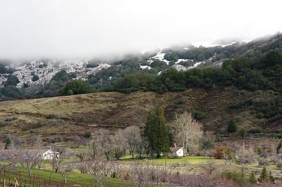 Arroyo Salado Area (Anza Borrego) - Feb 2010