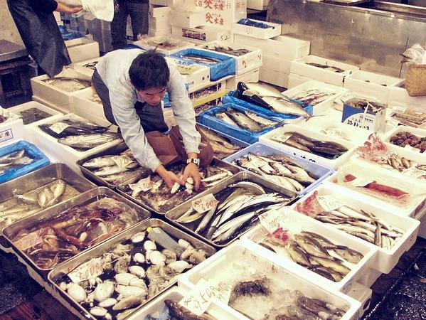 Tokyo - Marche aux poissons de Tsukiji