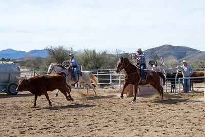 2017-Sunday Roping-0015