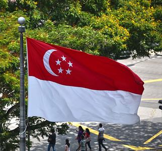 Singapore Public