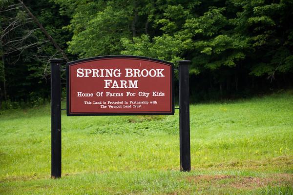 Summer Camp at Spring Brook Farm, 2017