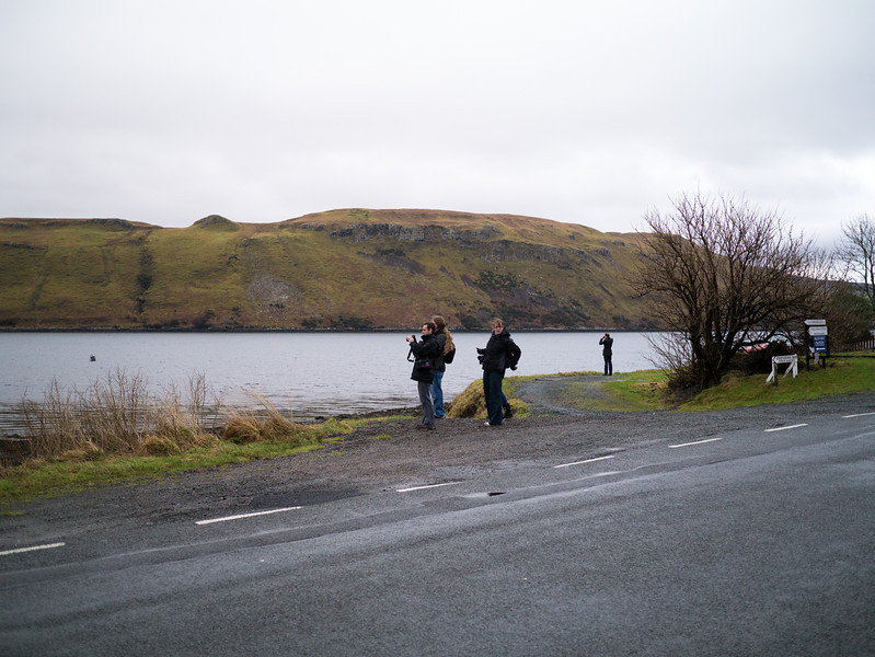 Everyone taking pictures of Loch Harport