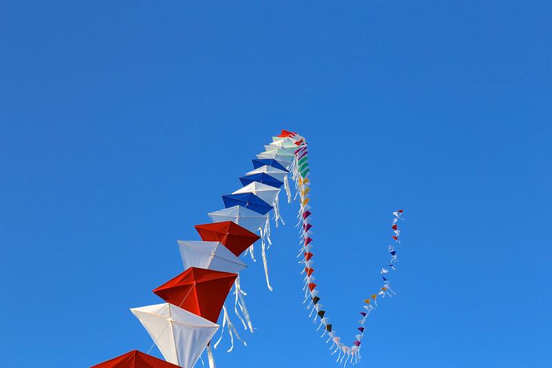 Kites Contrast IMG_1170.jpg