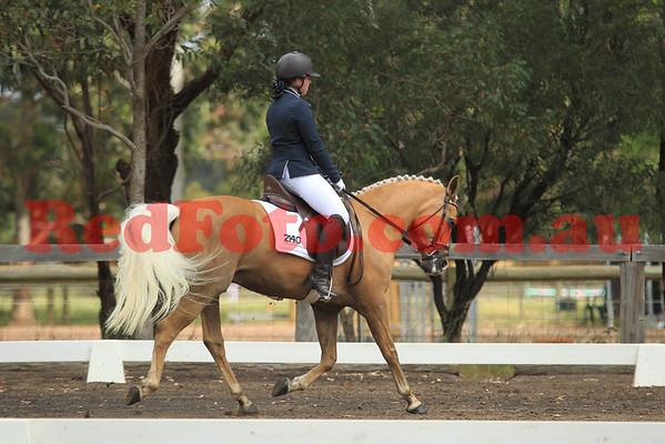 2014 10 11 SVDA Boutique Dressage Novice Competitive Pony