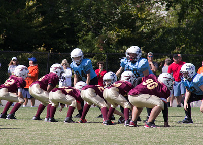 02 Panthers vs Redskins
