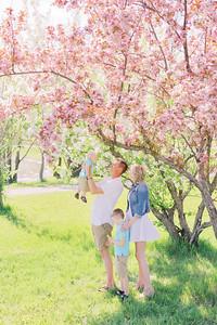 Tasha, Eric, Liam, Oliver - Cherry Blossom Mini Session