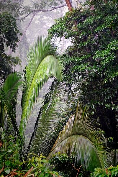 Honduras 0247_.jpg