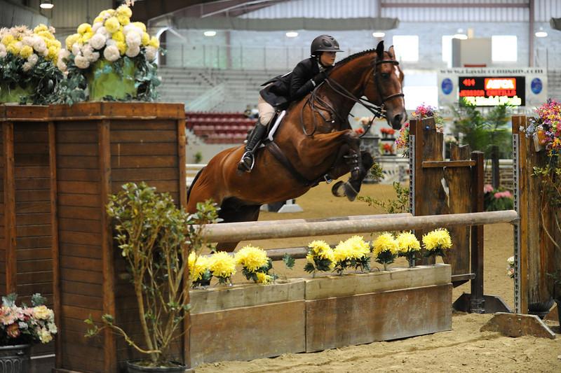 Horse show (13).jpg