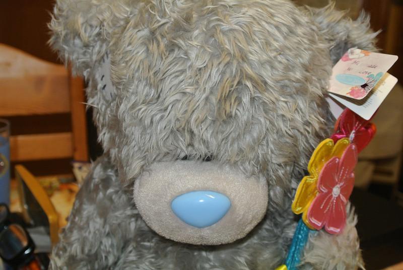 2014-02-14 Bear 'Jinan' 004.JPG