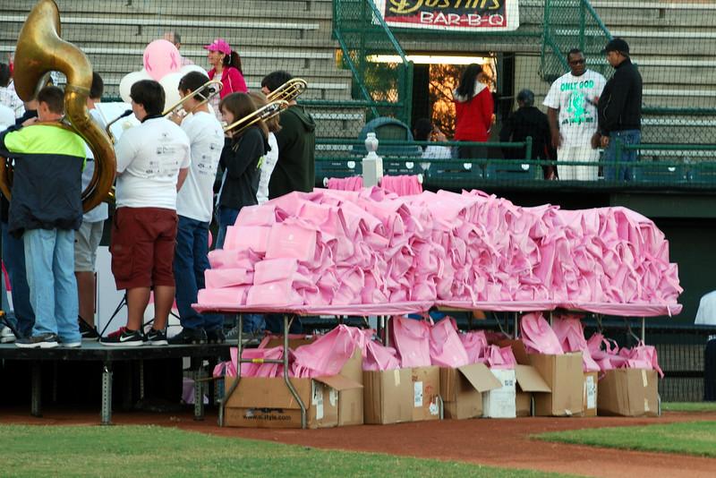 2014 Making Strides Against Breast Cancer in Daytona Beach (286).JPG