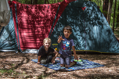 Collie Camping 12-01-2013