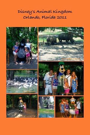 FL, Orlando - Disney's Animal Kingdom