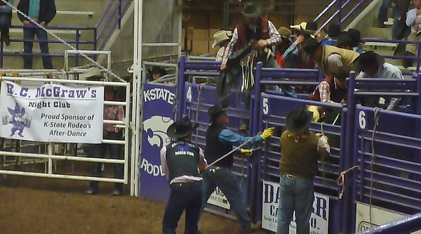 2013-02-22 Rodeo