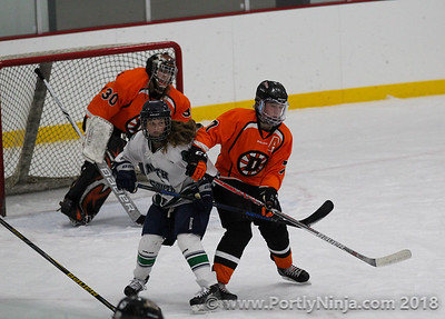 DHS Girls VS West Fargo United 12-0117