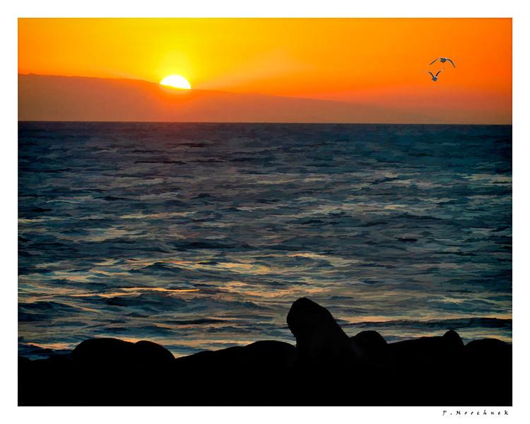 sunsetbuzzsim0-(5).jpg