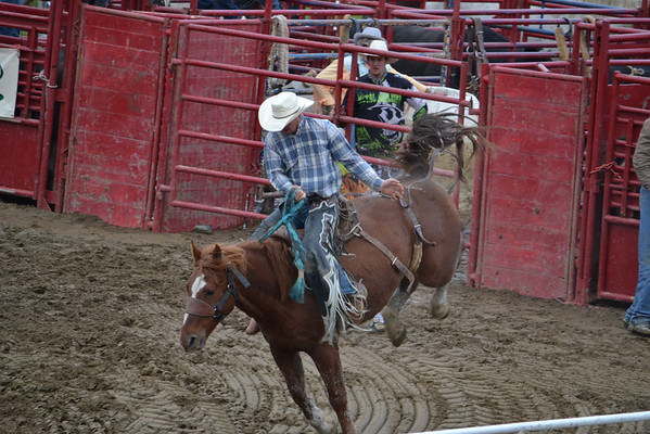 2nd Section Bull Riding