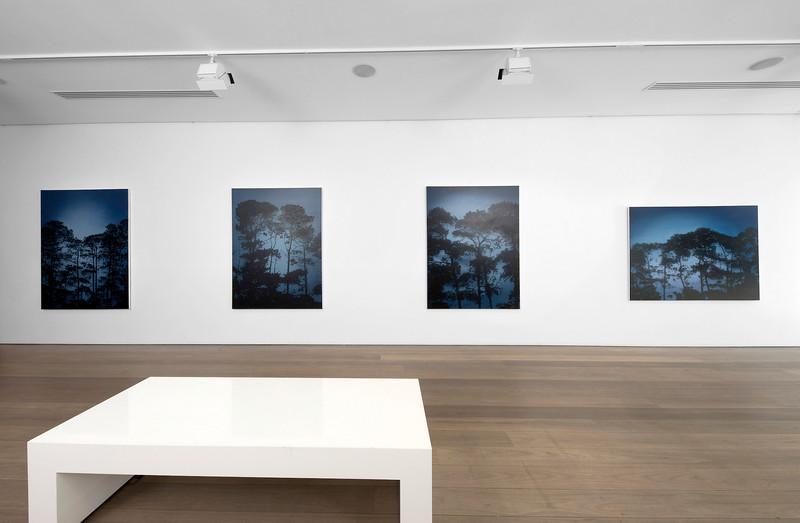 2017 Shifting Light, Olsen Gallery, Sydney