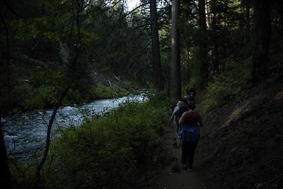 Cascades Eco Tour