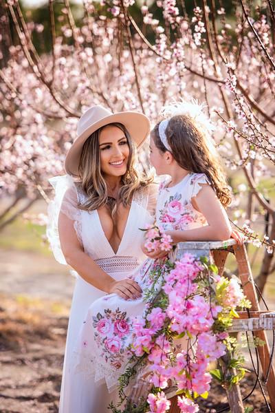 Peach blossoms Feb 2021 - Evans