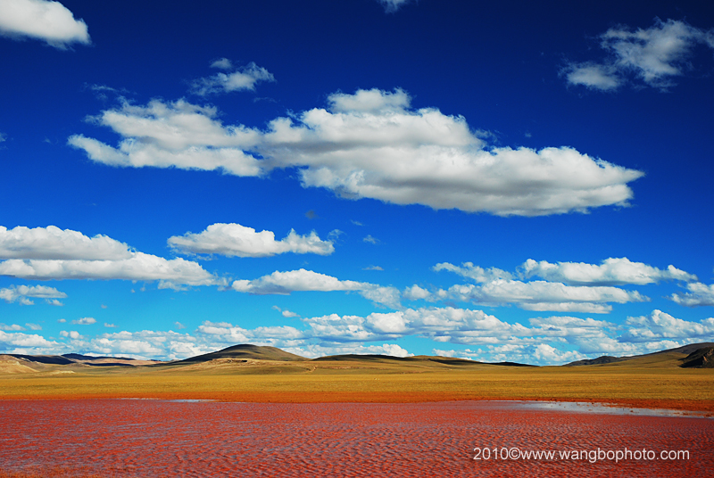 八千里路云和月 -- 我的西藏之行 ( 大北线、林芝线) - Bob - 清韵
