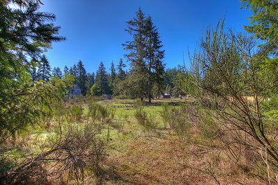 20424 SE 241st Pl  Maple Valley, Wa