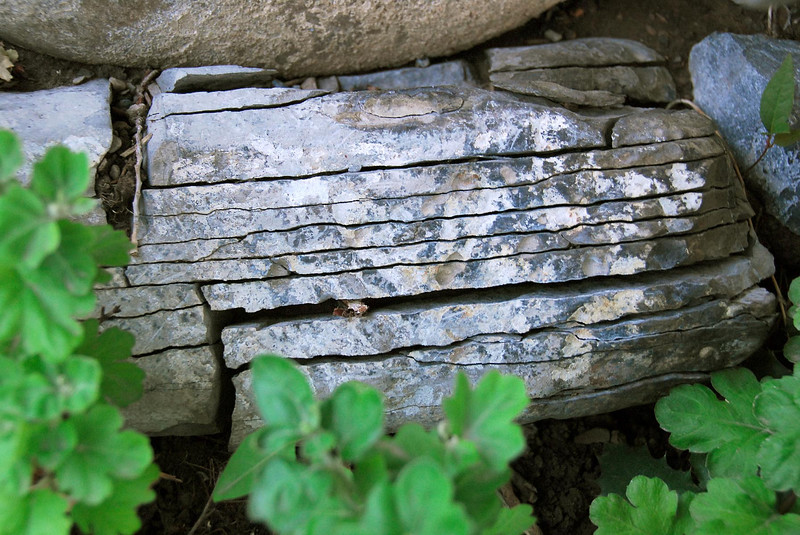 8/1/07 – I did our landscaping many years ago and put several large rocks in our flowerbeds. This one over the years has continued to crack in thin layers. Eventually I'm going to have a pile of slate.