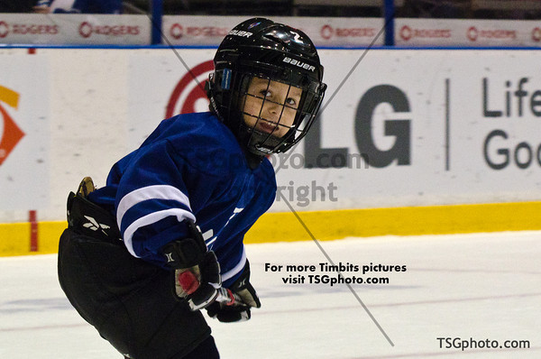 March 3 - Marlies vs Americans - ALL PICS POSTED Timbits & Future Starters & Flag Kids & Zamboni Kids pictures are posted