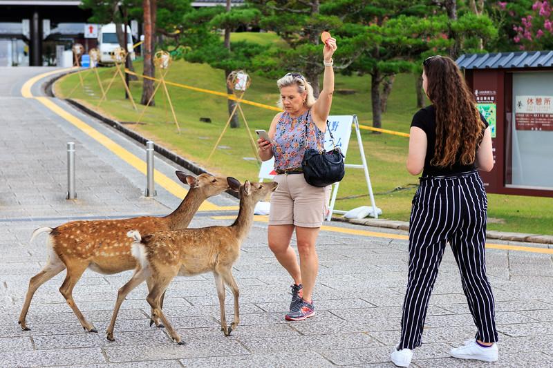 2018.08.08 Asia Vacation 1083.jpg