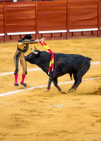 Bullfight5.jpg