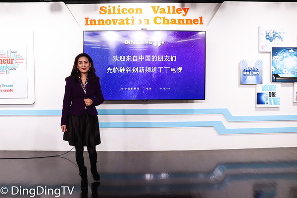 Chinese Tech Park Delegation in Silicon Valley
