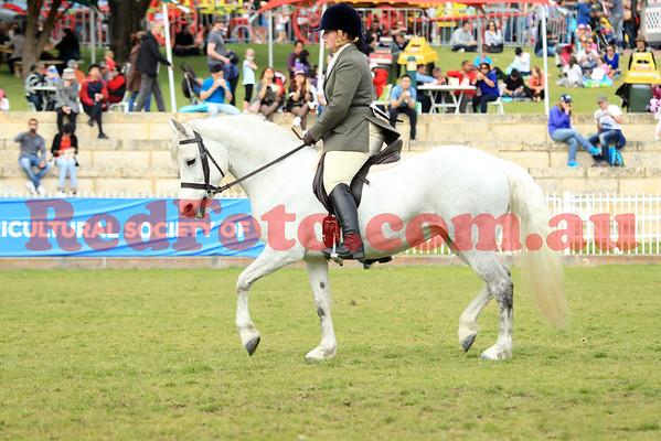 2014 09 29 Perth Royal Show APSB Connemara Ridden