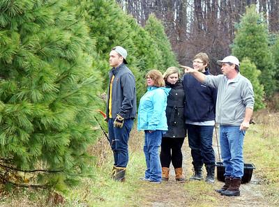 Christmas Tree Shopping Nov. 27, 2015