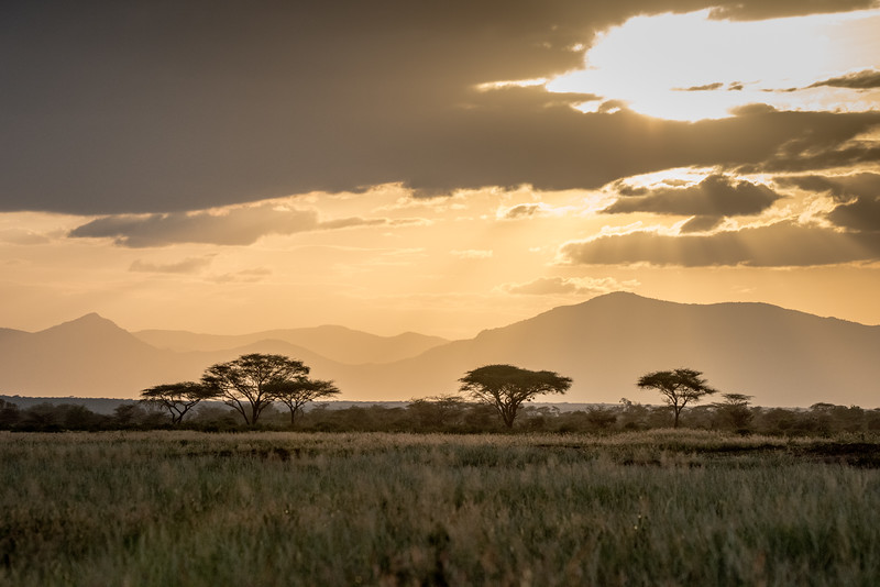 Samburu (22 of 70).jpg