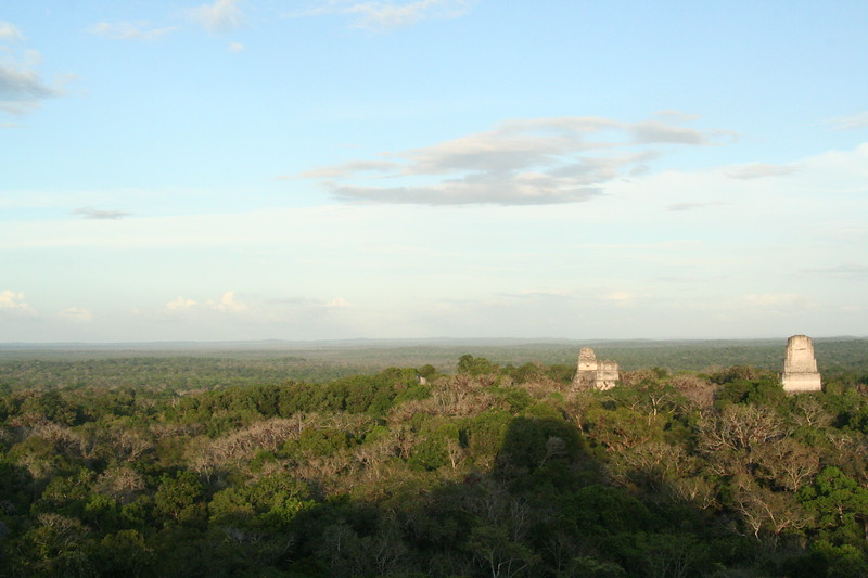 Temples rise above the last millennium of jungle growth