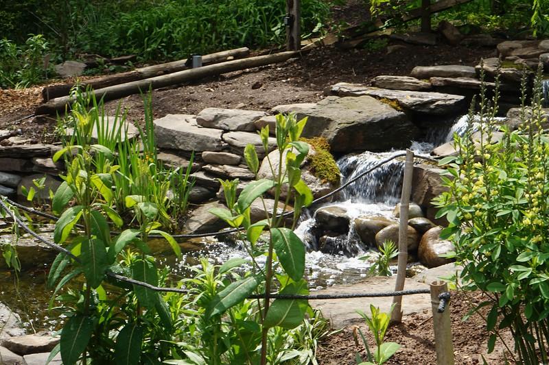 Reeves-Reed Arboretum 33.jpg