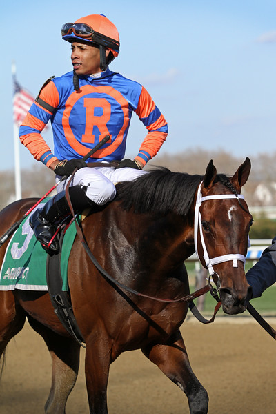 Always Shopping (Awesome Again) and jockey Manny Franco win the Gazelle (Gr II) at Aqueduct Racetrack 4/6/19. Trainer: Todd Pletcher. Owner: Repole Stable
